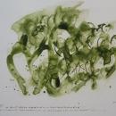 HH 13 Mit dem grünen Lautenbande
